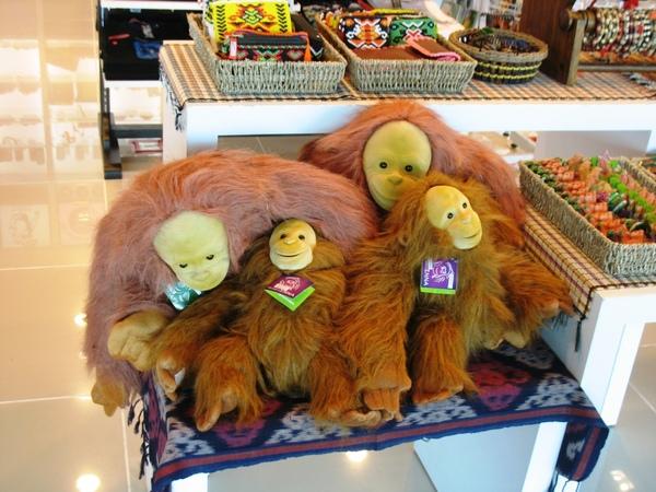 亞庇的猴子(還是人猿?)好可愛!