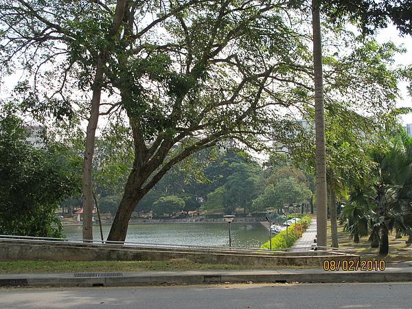 我家對面的巴西立公園
