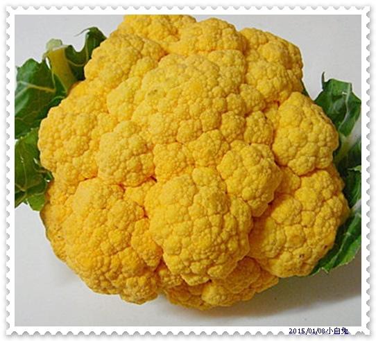 黃金花椰菜-2.jpg