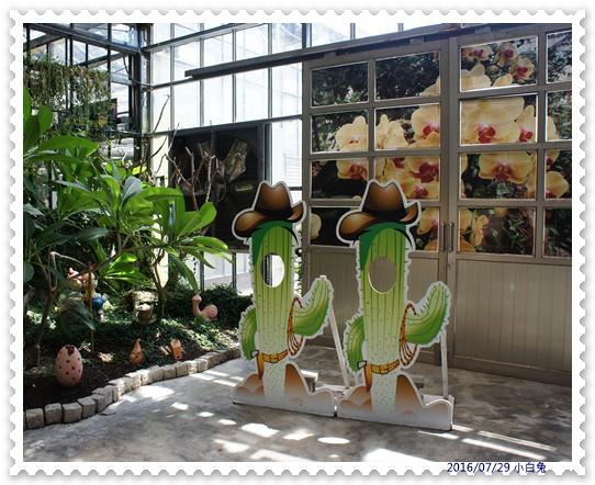 金車蘭花園-6.jpg