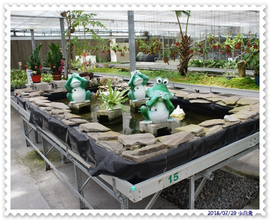 金車蘭花園-20.jpg
