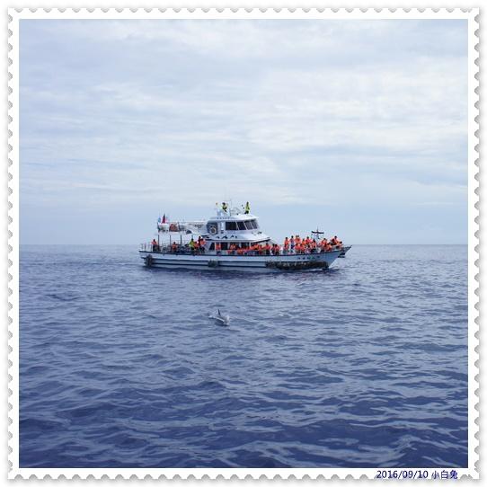 龜山島-6.jpg