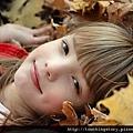 【勵志感人故事】別讓明年的秋天後悔今年的秋天