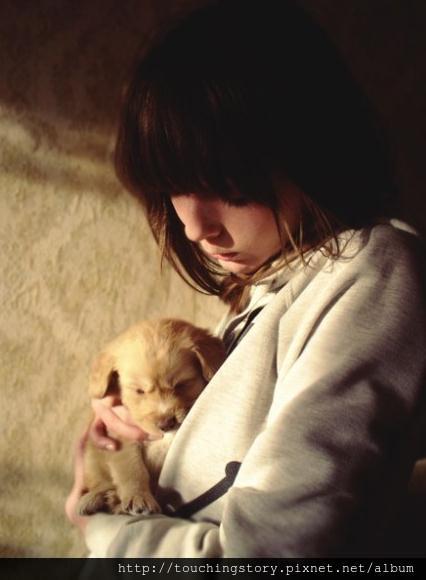 【勵志感人故事】不要輕易養狗,因為豢養就是承諾,你就是牠的全部