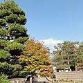 20111023077.jpg