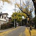 20111025075.jpg