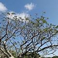 20111217126.jpg