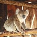 2001_Melbourne_017