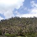 2002_Tasmania_Launceston_10