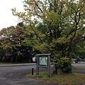 20130926_iPhone_096.jpg