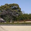 20140131_Kansai_Lumix_052.jpg