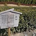 20140131_Kansai_Lumix_053.jpg