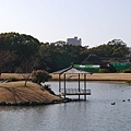 20140131_Kansai_Lumix_067.jpg