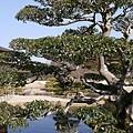 20140131_Kansai_Lumix_077.jpg