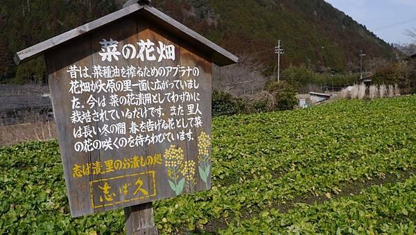 20140201_Kansai_Lumix_013.jpg