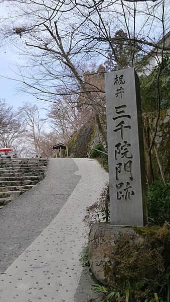 20140201_Kansai_Lumix_034.jpg