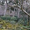 20140201_Kansai_Lumix_051.jpg