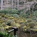 20140201_Kansai_Lumix_057.jpg