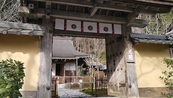 20140201_Kansai_Lumix_138.jpg