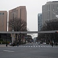 20140220_Tokyo_Simba_58.jpg