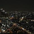 20140220_Tokyo_Simba_78.jpg