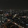 20140220_Tokyo_Simba_79.jpg