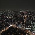 20140220_Tokyo_Simba_80.jpg