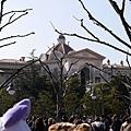 20140221_Tokyo_Simba_017.jpg