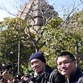 20140221_Tokyo_Simba_025.jpg