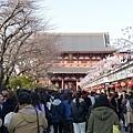 20140222_Tokyo_Simba_050.jpg