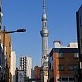 20140222_Tokyo_Simba_051.jpg