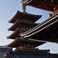 20140222_Tokyo_Simba_059.jpg