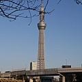 20140222_Tokyo_Simba_068.jpg