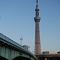 20140222_Tokyo_Simba_082.jpg