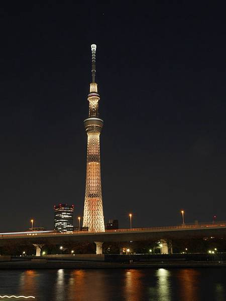 20140222_Tokyo_Simba_086.jpg