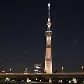 20140222_Tokyo_Simba_088.jpg
