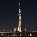 20140222_Tokyo_Simba_089.jpg