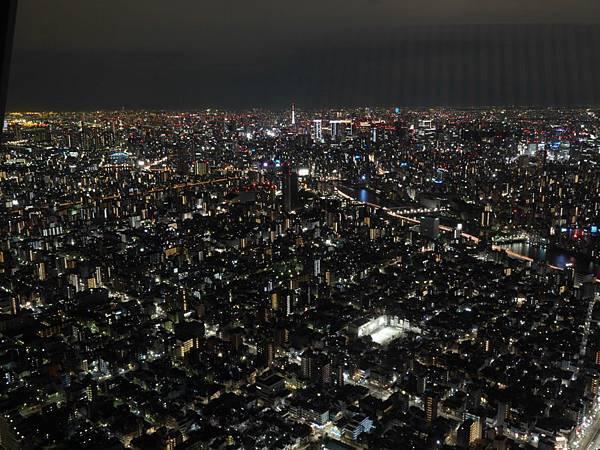 20140222_Tokyo_Simba_099.jpg