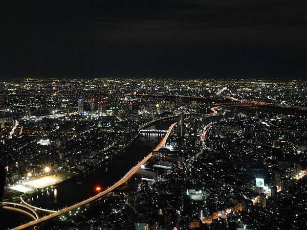 20140222_Tokyo_Simba_101.jpg