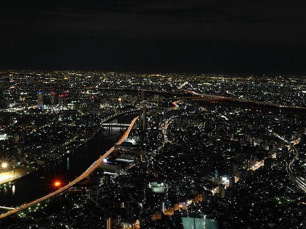 20140222_Tokyo_Simba_102.jpg