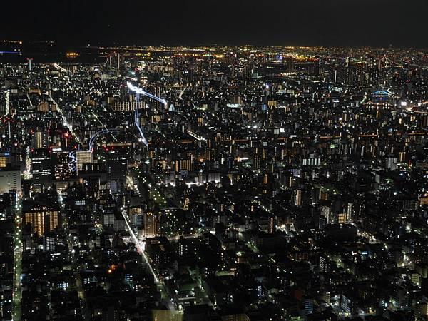 20140222_Tokyo_Simba_103.jpg