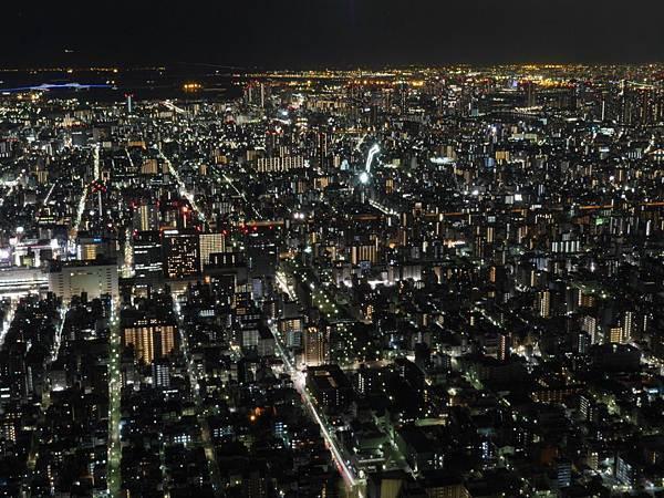 20140222_Tokyo_Simba_104.jpg