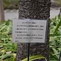 20140223_Tokyo_Simba_16.jpg