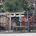 20140223_Tokyo_Simba_19.jpg