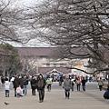 20140223_Tokyo_Simba_21.jpg