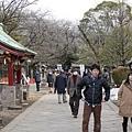 20140223_Tokyo_Simba_37.jpg
