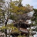 20140223_Tokyo_Simba_40.jpg