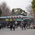 20140223_Tokyo_Simba_43.jpg