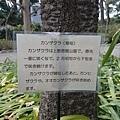 20140223_Tokyo_Z1_07.jpg