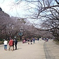20140223_Tokyo_Z1_11.jpg